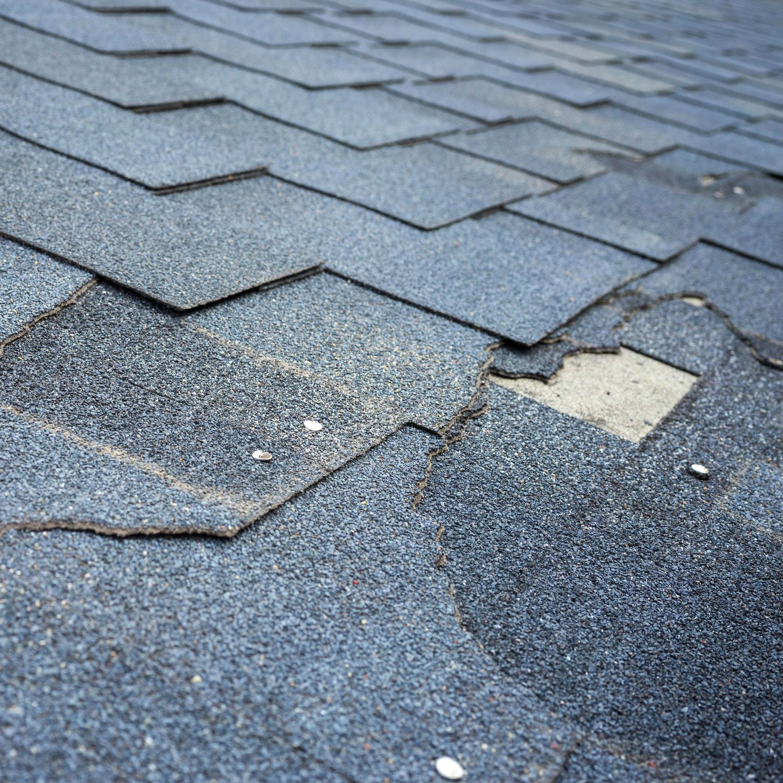 curling shingles on roofing